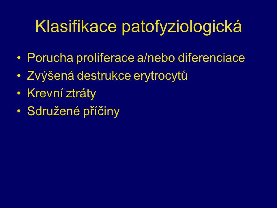 Klasifikace patofyziologická Porucha proliferace a/nebo diferenciace Zvýšená destrukce erytrocytů Krevní ztráty Sdružené příčiny