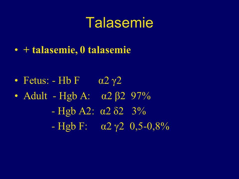 Talasemie + talasemie, 0 talasemie Fetus: - Hb F α2 γ2 Adult - Hgb A: α2 β2 97% - Hgb A2: α2 δ2 3% - Hgb F: α2 γ2 0,5-0,8%