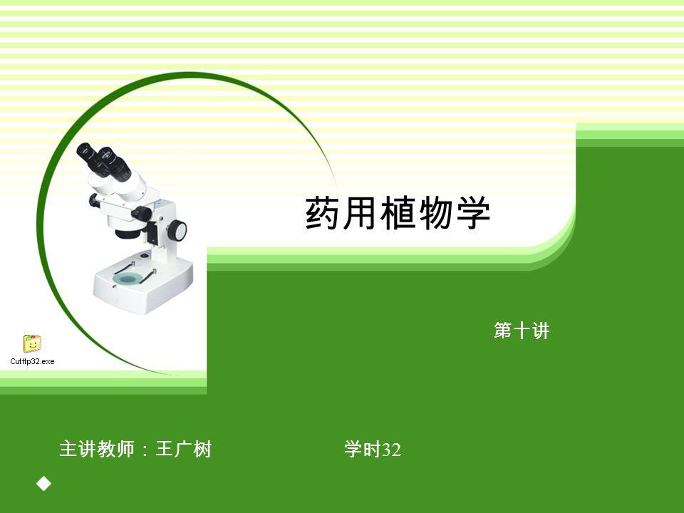 药用植物学 第十讲 主讲教师:王广树 学时 32
