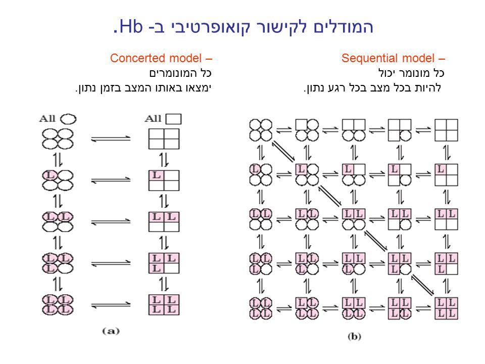 המודלים לקישור קואופרטיבי ב- Hb. Concerted model – כל המונומרים ימצאו באותו המצב בזמן נתון. Sequential model – כל מונומר יכול להיות בכל מצב בכל רגע נת