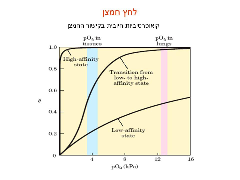 לחץ חמצן קואופרטיביות חיובית בקישור החמצן