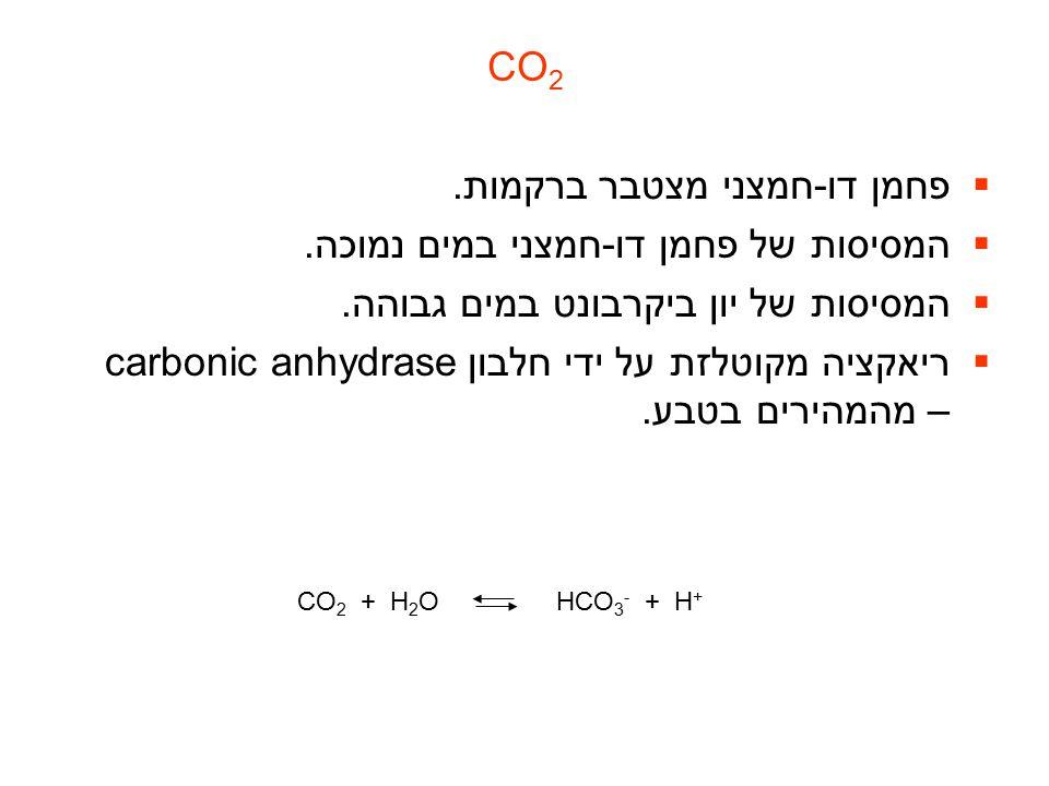 CO 2  פחמן דו-חמצני מצטבר ברקמות.  המסיסות של פחמן דו-חמצני במים נמוכה.  המסיסות של יון ביקרבונט במים גבוהה.  ריאקציה מקוטלזת על ידי חלבון carboni