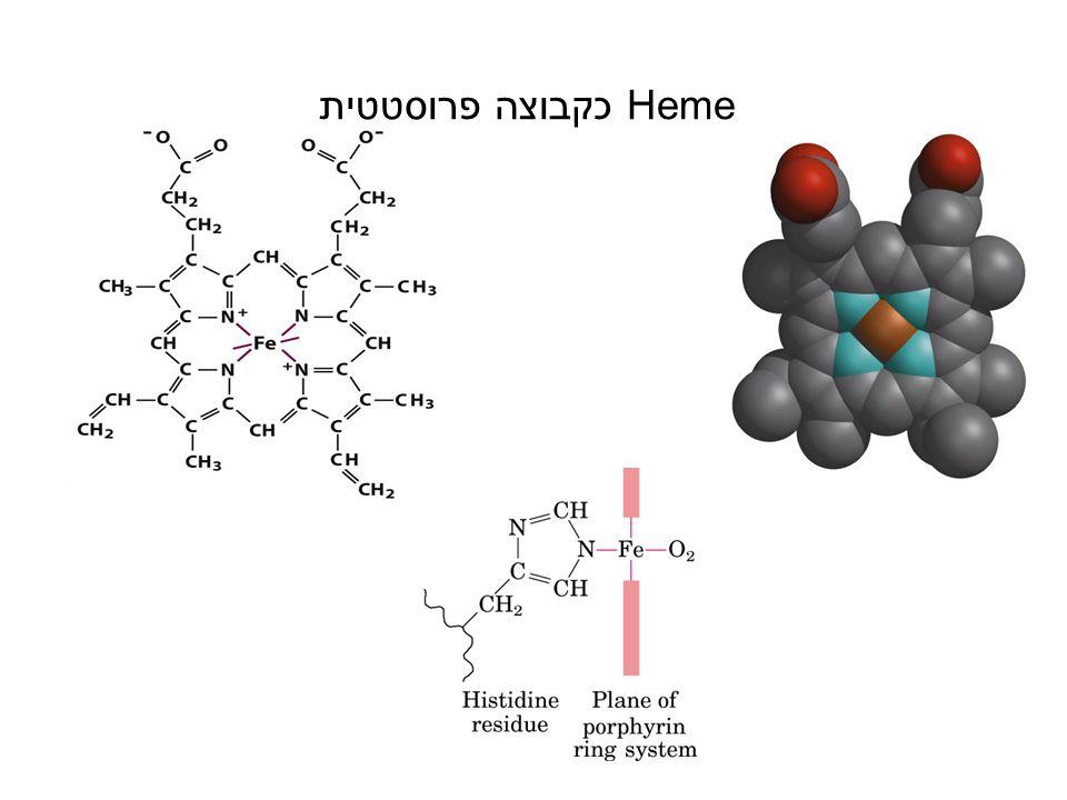 שאלה CO נקשר לקבוצת heme חופשית באפיניות גדולה פי 20000 מאשר חמצן.