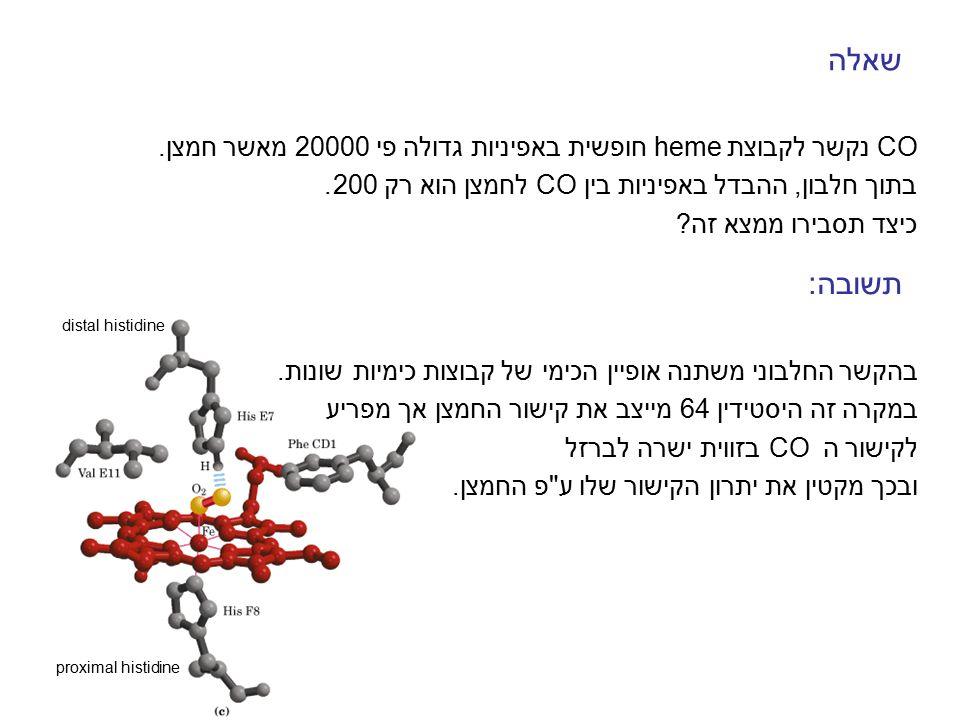 Mb - MyoglobinHb - Hemoglobin נשא של חמצן בשריר.נשא של חמצן בדם.