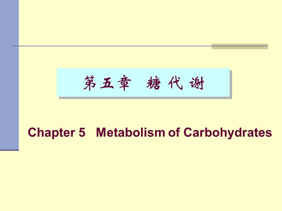 Chapter 5 Metabolism of Carbohydrates 第五章 糖 代 谢