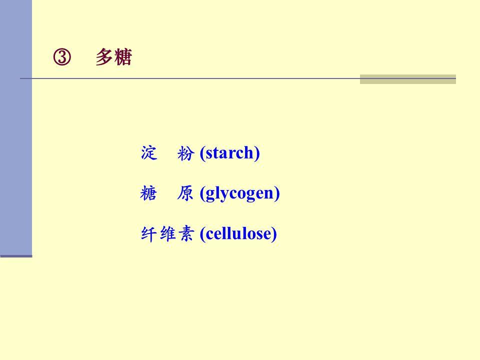 ③ 多糖 淀 粉 (starch) 糖 原 (glycogen) 纤维素 (cellulose)