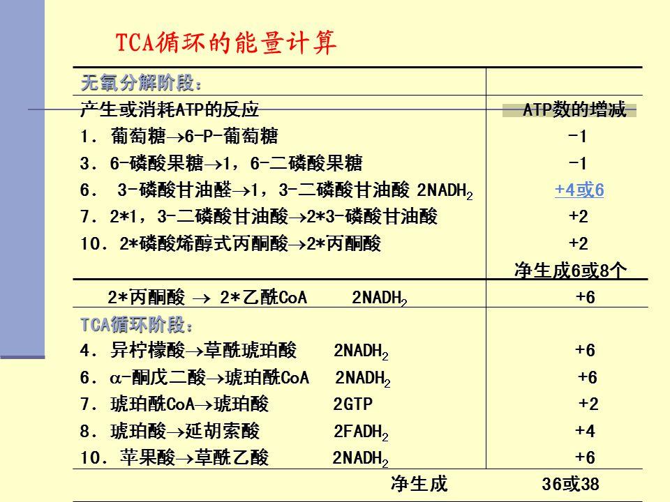 TCA循环的能量计算 无氧分解阶段: 产生或消耗ATP的反应 ATP数的增减 1.葡萄糖  6-P-葡萄糖 -1 3.6-磷酸果糖  1,6-二磷酸果糖 -1 6. 3-磷酸甘油醛  1,3-二磷酸甘油酸 2NADH 2 +4或6 +4或6+4或6 7.2*1,3-二磷酸甘油酸  2*3-磷