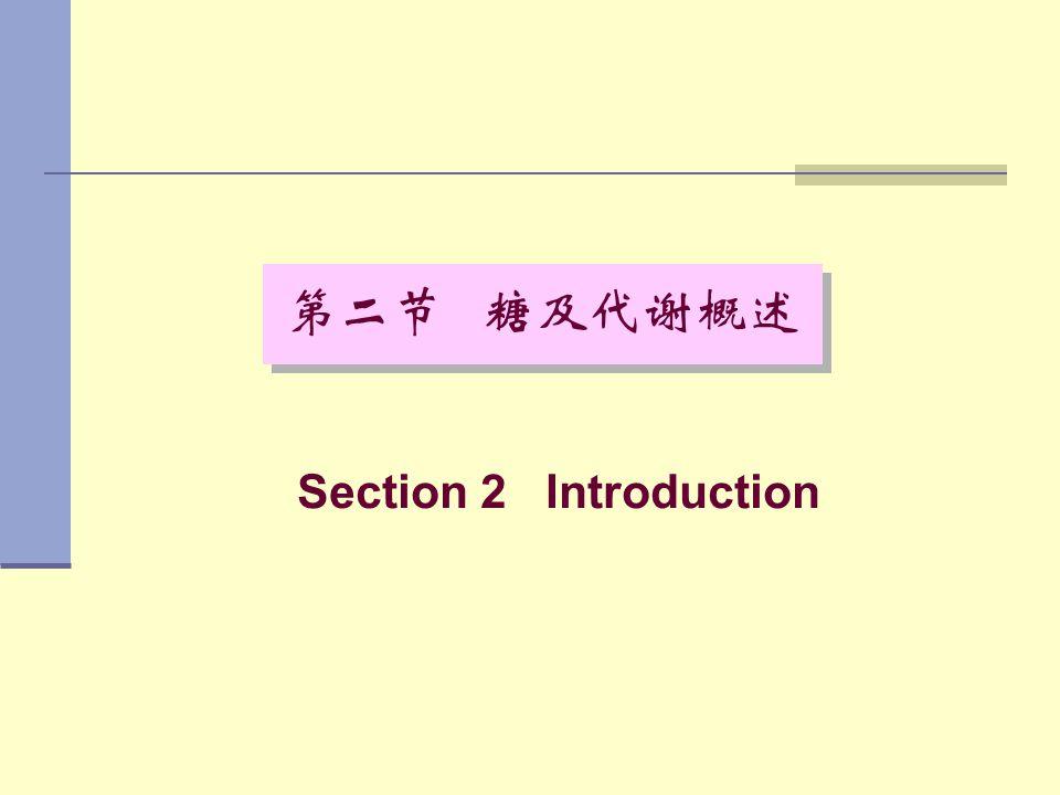 Section 2 Introduction 第二节 糖及代谢概述