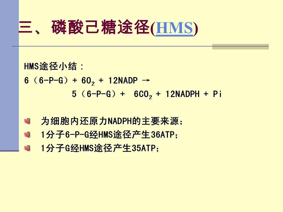 三、磷酸己糖途径 (HMS)HMS HMS途径小结 : 6(6-P-G)+ 6O 2 + 12NADP → 5(6-P-G)+ 6CO 2 + 12NADPH + Pi 5(6-P-G)+ 6CO 2 + 12NADPH + Pi 为细胞内还原力NADPH的主要来源; 1分子6-P-G经HMS途径产
