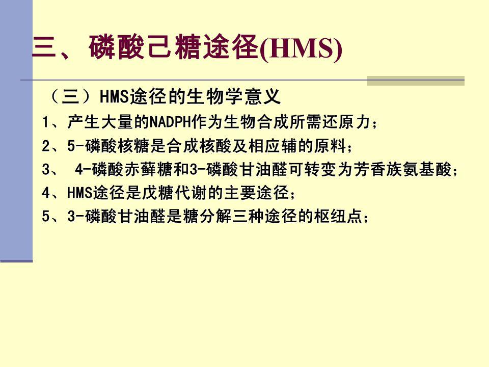 三、磷酸己糖途径 (HMS) (三)HMS途径的生物学意义 1、产生大量的NADPH作为生物合成所需还原力; 2、5-磷酸核糖是合成核酸及相应辅的原料; 3、 4-磷酸赤藓糖和3-磷酸甘油醛可转变为芳香族氨基酸; 4、HMS途径是戊糖代谢的主要途径; 5、3-磷酸甘油醛是糖分解三种途径的枢纽点;