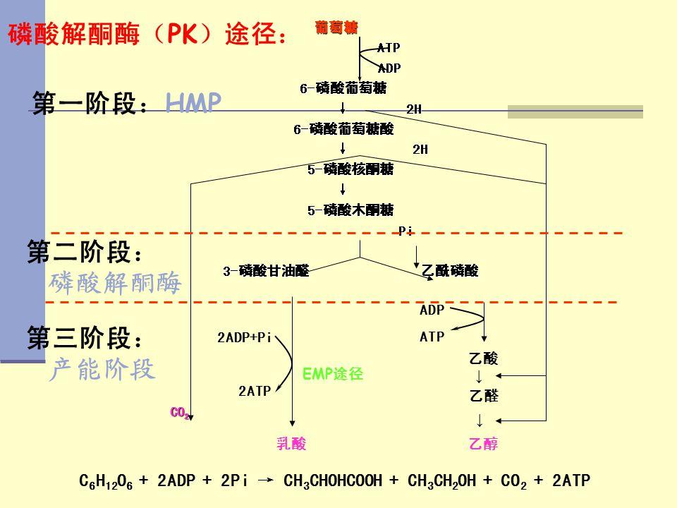 C 6 H 12 O 6 + 2ADP + 2Pi → CH 3 CHOHCOOH + CH 3 CH 2 OH + CO 2 + 2ATP 葡萄糖 葡萄糖 ATP ATP ADP ADP 6-磷酸葡萄糖 6-磷酸葡萄糖 ↓ 2H ↓ 2H 6-磷酸葡萄糖酸 6-磷酸葡萄糖酸 ↓ 2H ↓ 2H 5