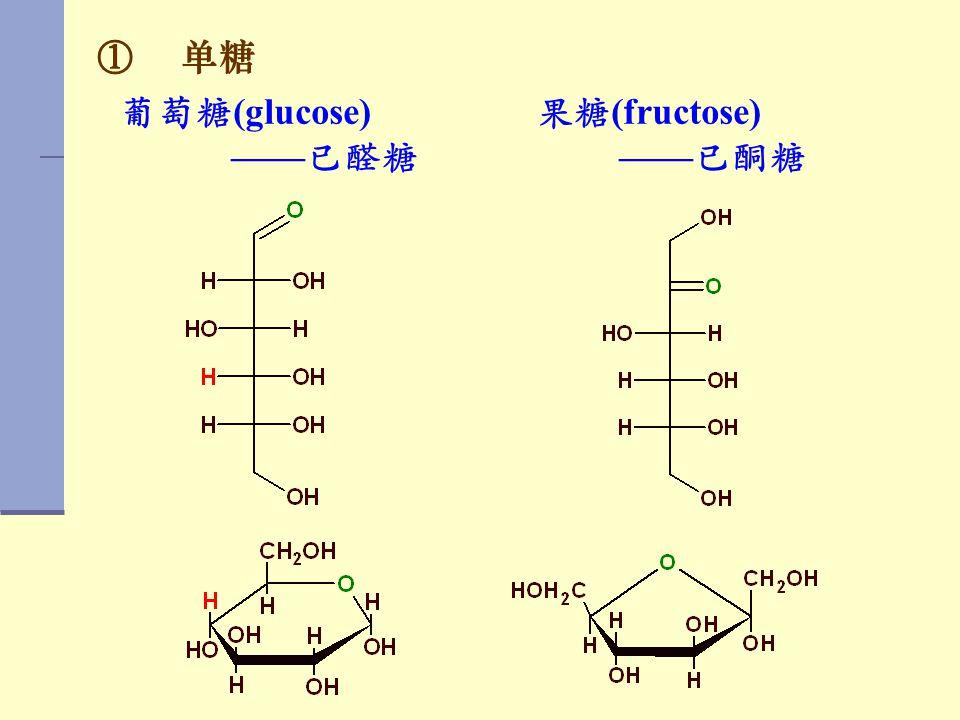 ① 单糖 葡萄糖 (glucose) —— 已醛糖 果糖 (fructose) —— 已酮糖