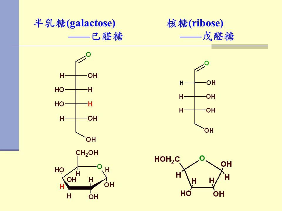 半乳糖 (galactose) —— 已醛糖 核糖 (ribose) —— 戊醛糖