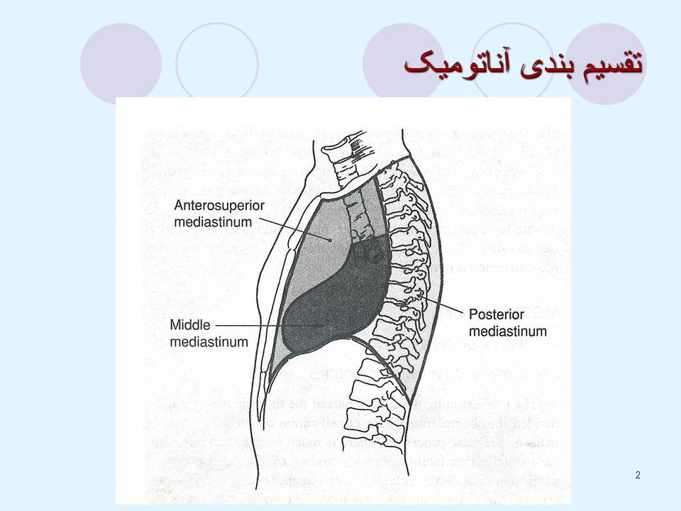 2 تقسیم بندی آناتومیک