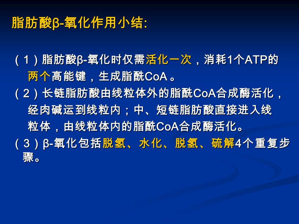 脂肪酸 β- 氧化作用小结 : ( 1 )脂肪酸 β- 氧化时仅需活化一次,消耗 1 个 ATP 的 两个高能键,生成脂酰 CoA 。 两个高能键,生成脂酰 CoA 。 ( 2 )长链脂肪酸由线粒体外的脂酰 CoA 合成酶活化, 经肉碱运到线粒内;中、短链脂肪酸直接进入线 经肉碱运到线粒内;中、短链