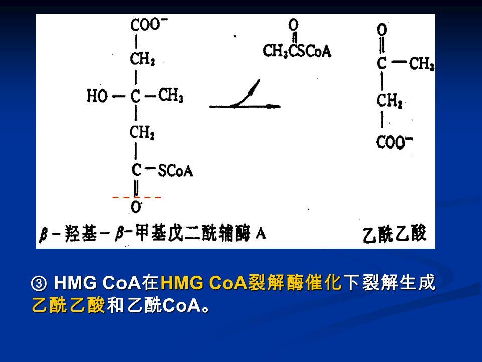 图 酮体的生成 -3 ③ HMG CoA 在 HMG CoA 裂解酶催化下裂解生成 乙酰乙酸和乙酰 CoA 。