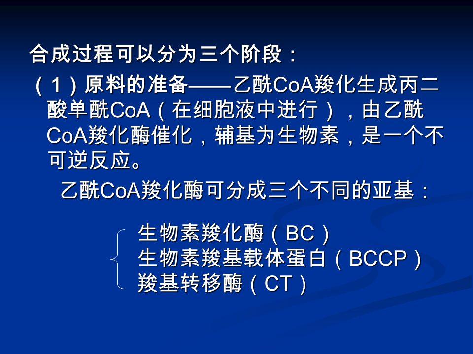 合成过程可以分为三个阶段: ( 1 )原料的准备 —— 乙酰 CoA 羧化生成丙二 酸单酰 CoA (在细胞液中进行),由乙酰 CoA 羧化酶催化,辅基为生物素,是一个不 可逆反应。 乙酰 CoA 羧化酶可分成三个不同的亚基: 乙酰 CoA 羧化酶可分成三个不同的亚基: 生物素羧化酶( BC ) 生