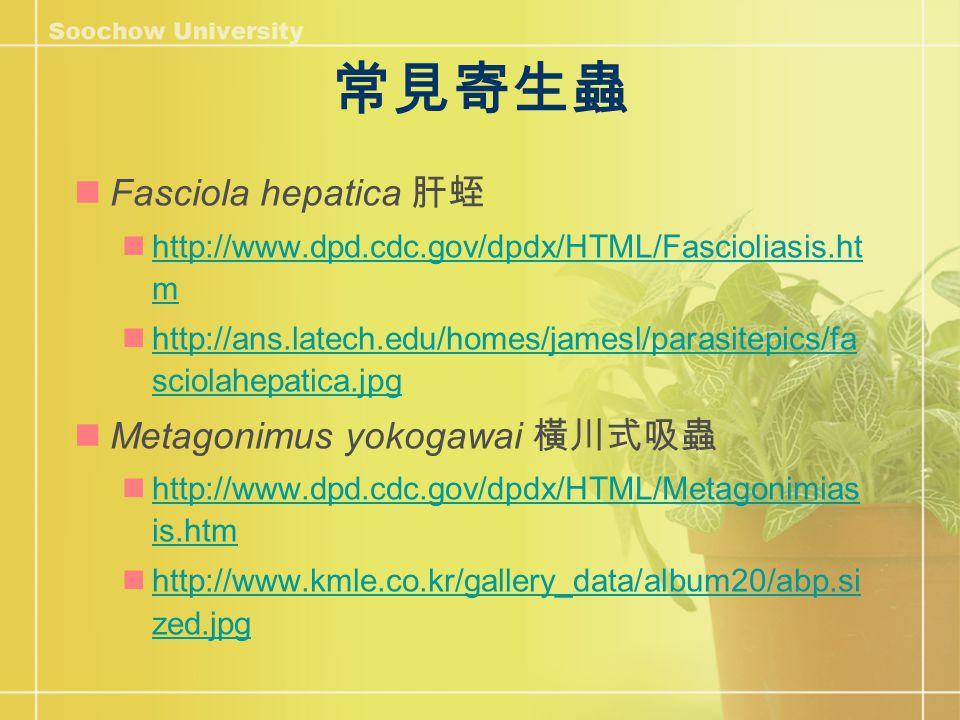 常見寄生蟲 Fasciola hepatica 肝蛭 http://www.dpd.cdc.gov/dpdx/HTML/Fascioliasis.ht m http://www.dpd.cdc.gov/dpdx/HTML/Fascioliasis.ht m http://ans.latech.edu/homes/jamesl/parasitepics/fa sciolahepatica.jpg http://ans.latech.edu/homes/jamesl/parasitepics/fa sciolahepatica.jpg Metagonimus yokogawai 橫川式吸蟲 http://www.dpd.cdc.gov/dpdx/HTML/Metagonimias is.htm http://www.dpd.cdc.gov/dpdx/HTML/Metagonimias is.htm http://www.kmle.co.kr/gallery_data/album20/abp.si zed.jpg http://www.kmle.co.kr/gallery_data/album20/abp.si zed.jpg