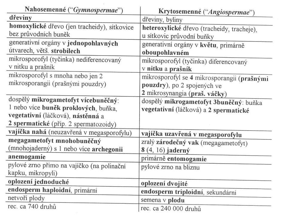 Typy gynecea (apokarpní, cenokarpní: syn-, para- a lyzikarpní)