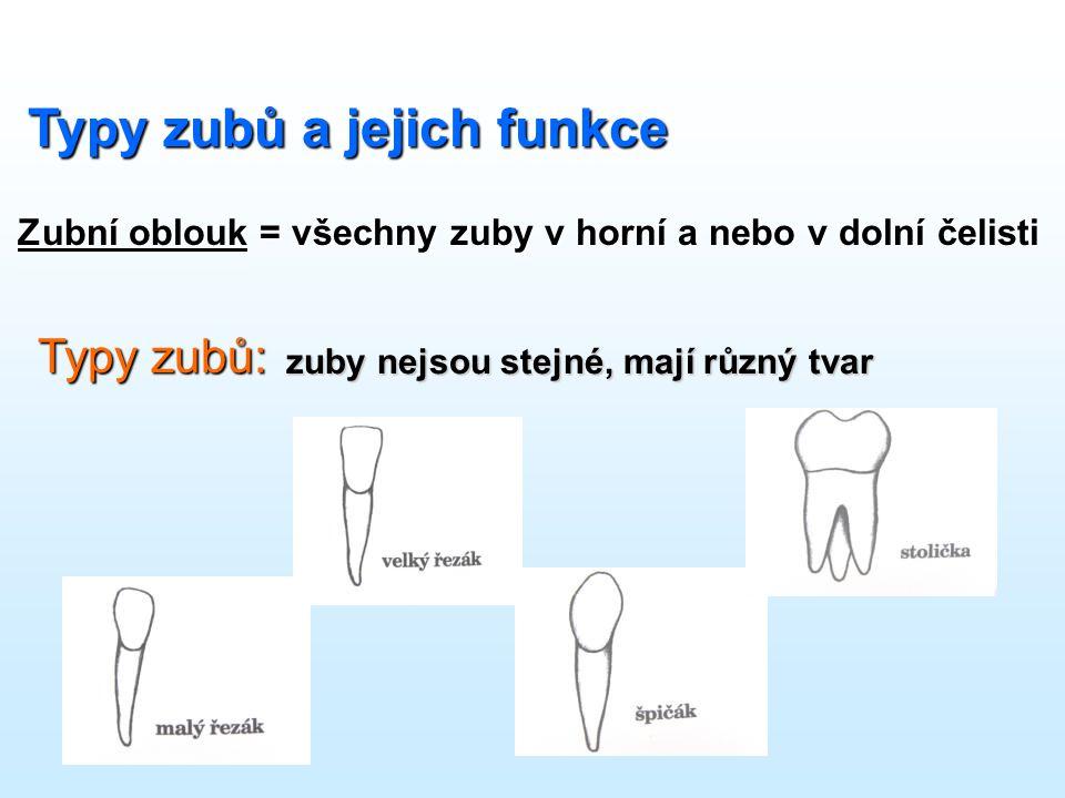 Výukový program sestavila Libuše Špičáková Použité zdroje: www.zdravezuby.cz Metodická příručka ZDRAVÉ ZUBY