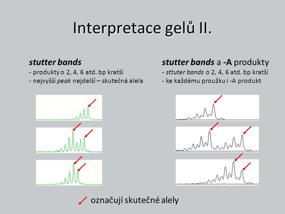 Interpretace gelů II. stutter bands - produkty o 2, 4, 6 atd. bp kratší - nejvyšší peak nejdelší – skutečná alela stutter bands a -A produkty - sttute