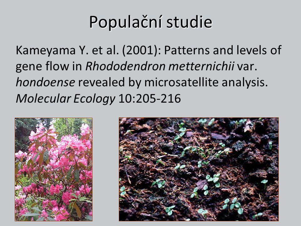 Populační studie Kameyama Y. et al. (2001): Patterns and levels of gene flow in Rhododendron metternichii var. hondoense revealed by microsatellite an