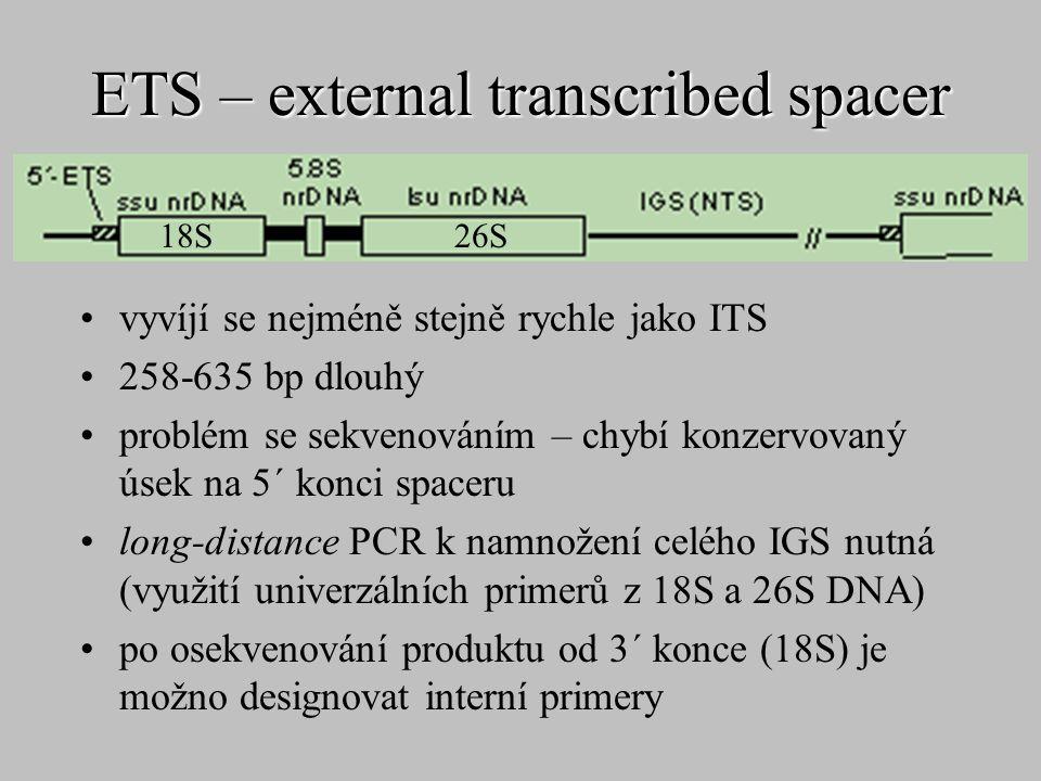 ETS – external transcribed spacer vyvíjí se nejméně stejně rychle jako ITS 258-635 bp dlouhý problém se sekvenováním – chybí konzervovaný úsek na 5´ k