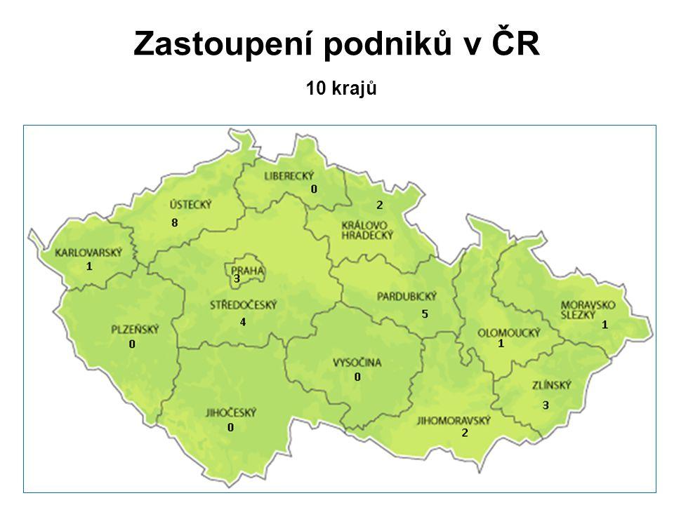 Zastoupení podniků v ČR 10 krajů