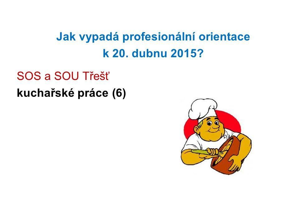 Jak vypadá profesionální orientace k 20. dubnu 2015? SOS a SOU Třešť kuchařské práce (6)