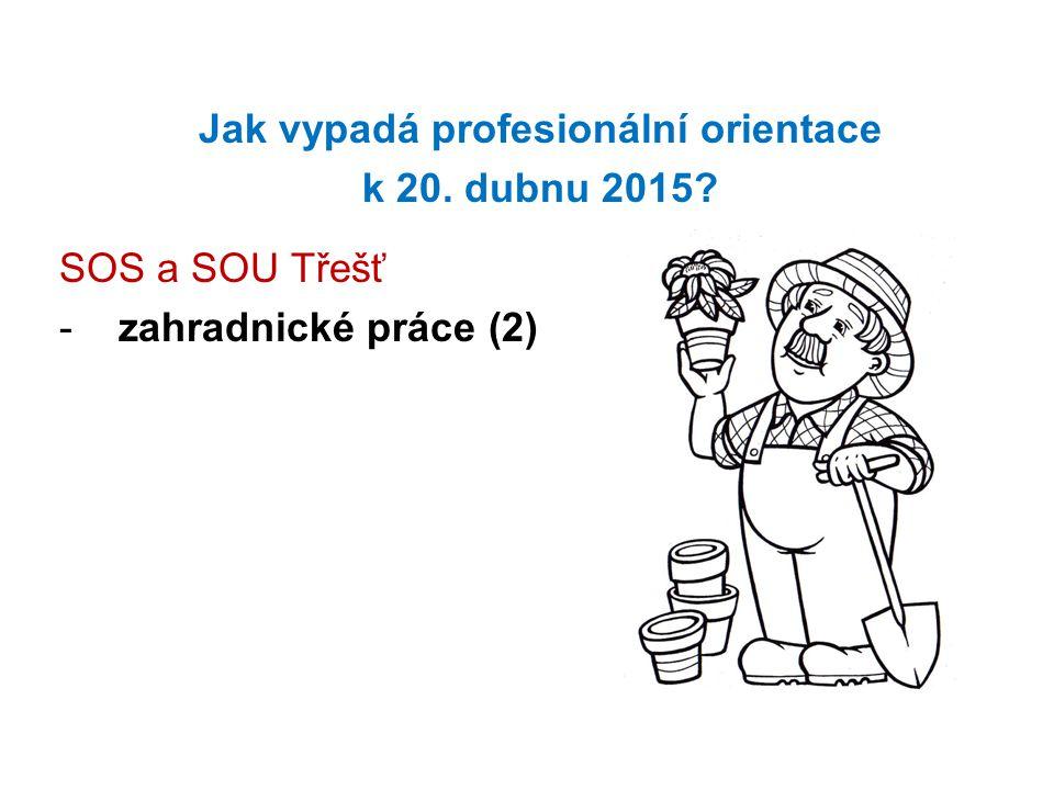 Jak vypadá profesionální orientace k 20. dubnu 2015? SOS a SOU Třešť -zahradnické práce (2)