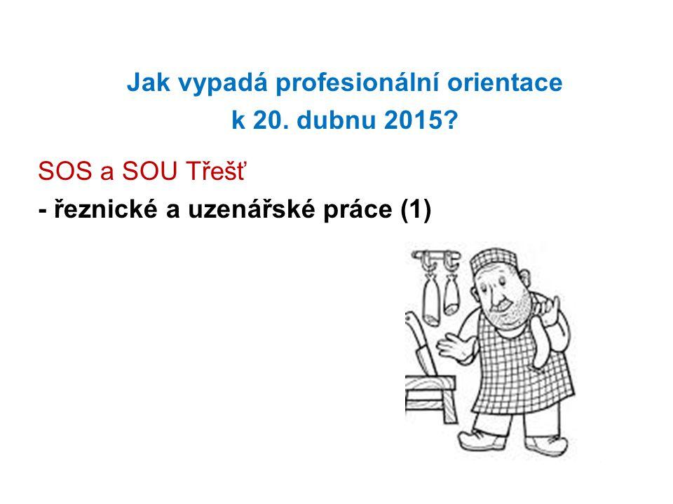Jak vypadá profesionální orientace k 20. dubnu 2015? SOS a SOU Třešť - řeznické a uzenářské práce (1)