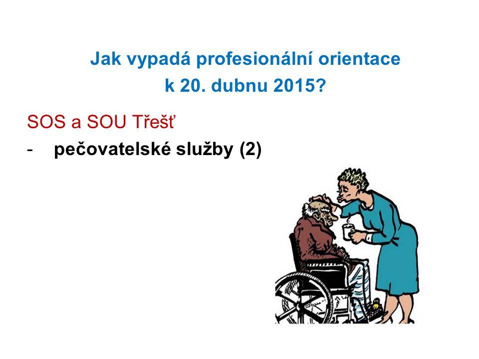 Jak vypadá profesionální orientace k 20. dubnu 2015? SOS a SOU Třešť -pečovatelské služby (2)