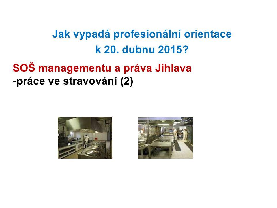 Jak vypadá profesionální orientace k 20. dubnu 2015? SOŠ managementu a práva Jihlava -práce ve stravování (2)
