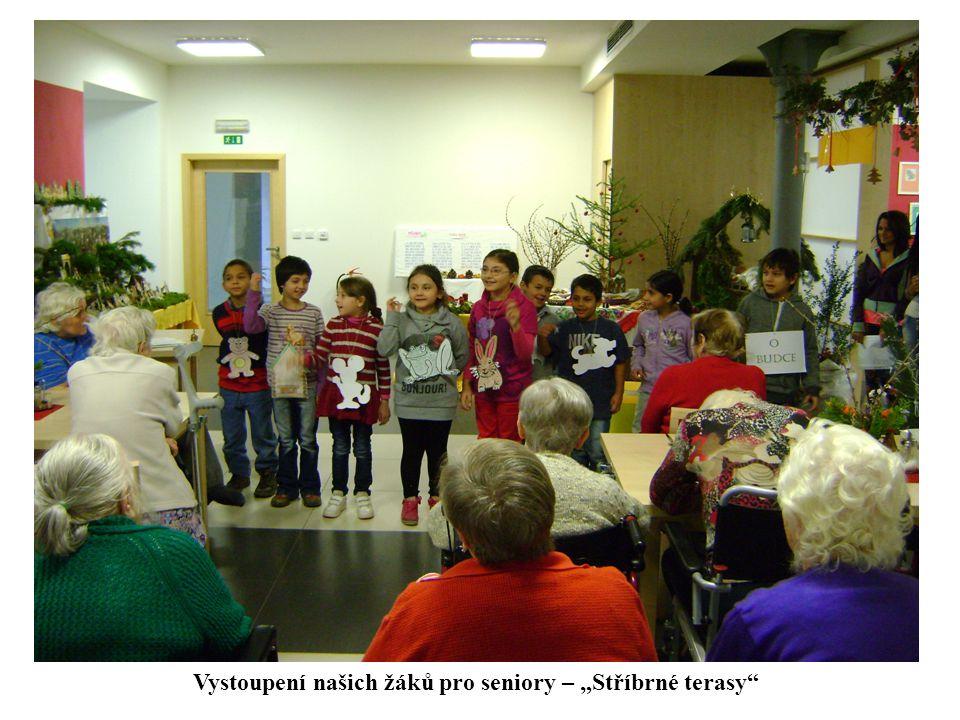 """Vystoupení našich žáků pro seniory – """"Stříbrné terasy"""""""