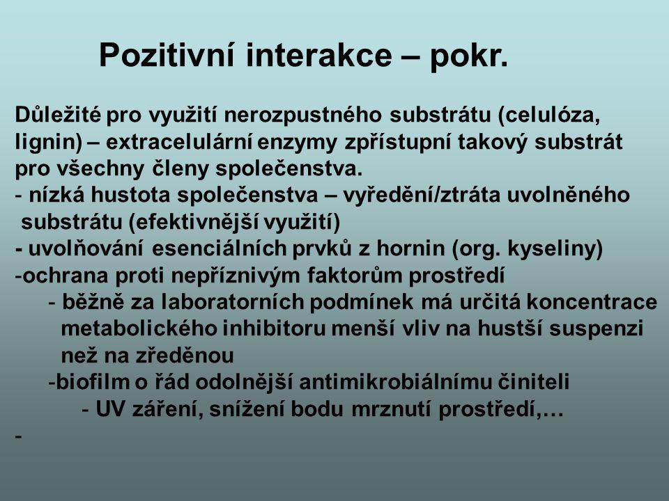 Pozitivní interakce – pokr. Důležité pro využití nerozpustného substrátu (celulóza, lignin) – extracelulární enzymy zpřístupní takový substrát pro vše