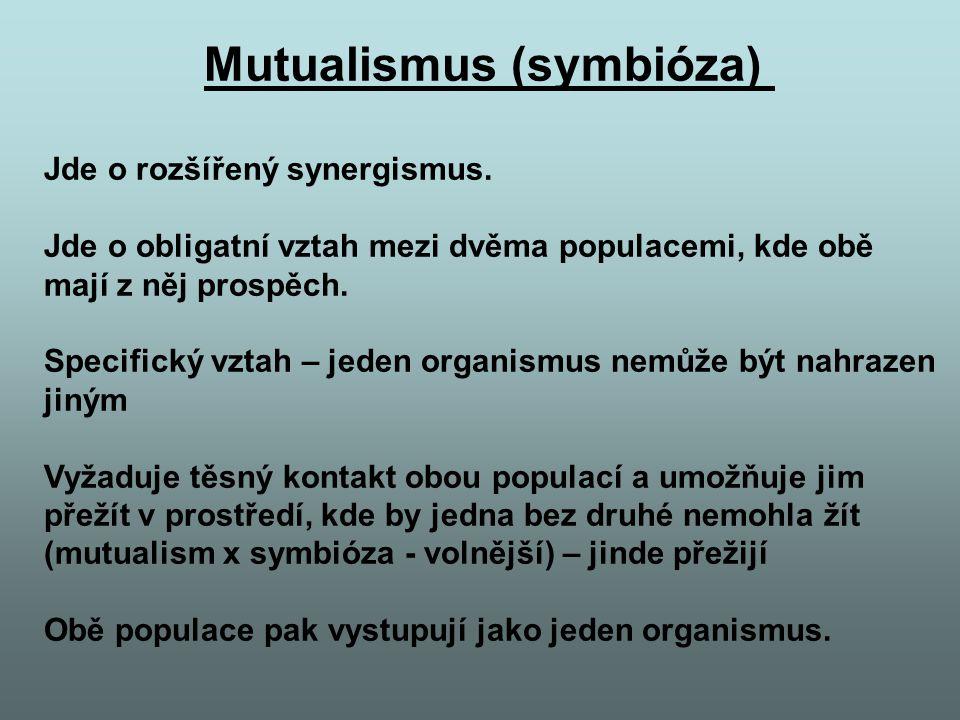 Mutualismus (symbióza) Jde o rozšířený synergismus. Jde o obligatní vztah mezi dvěma populacemi, kde obě mají z něj prospěch. Specifický vztah – jeden