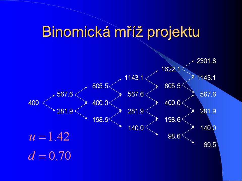 Binomická mříž projektu