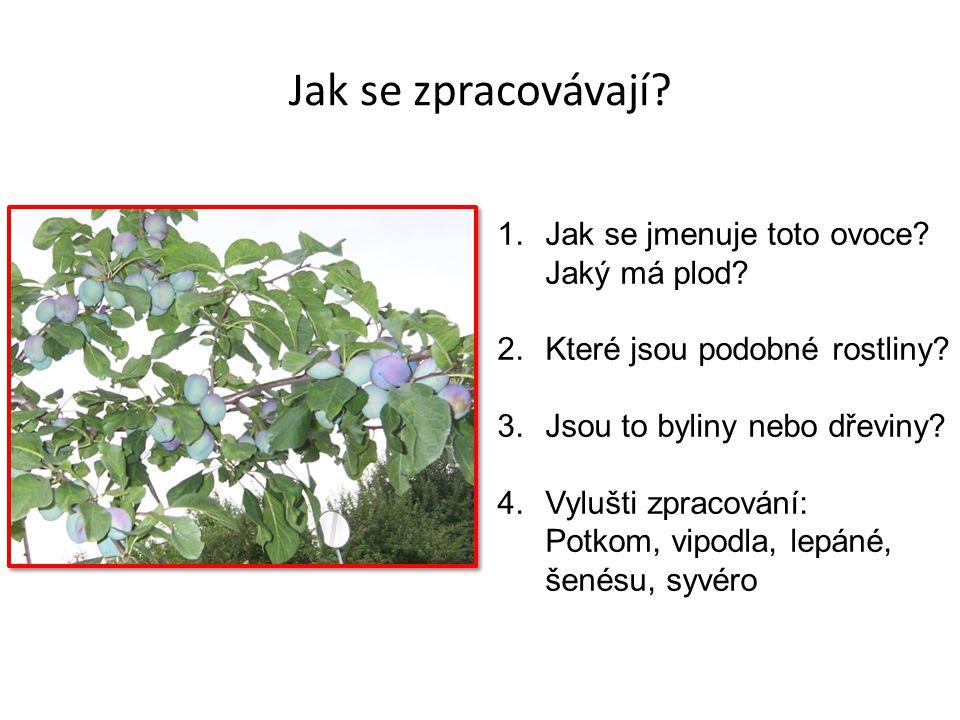 Jak se zpracovávají? 1.Jak se jmenuje toto ovoce? Jaký má plod? 2.Které jsou podobné rostliny? 3.Jsou to byliny nebo dřeviny? 4.Vylušti zpracování: Po