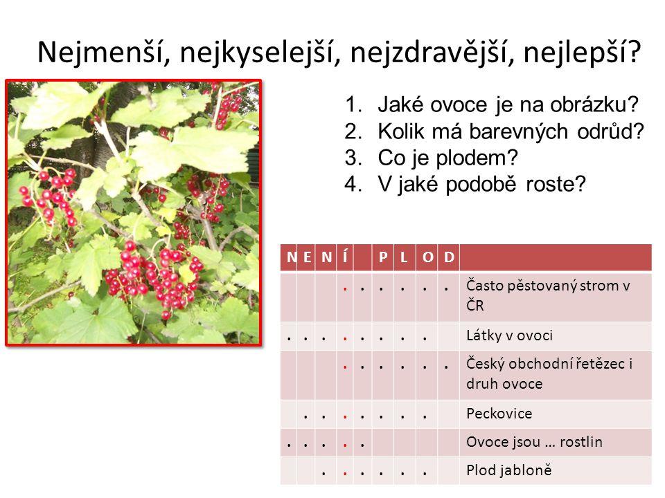 Nejmenší, nejkyselejší, nejzdravější, nejlepší? NENÍPLOD......Často pěstovaný strom v ČR........Látky v ovoci......Český obchodní řetězec i druh ovoce