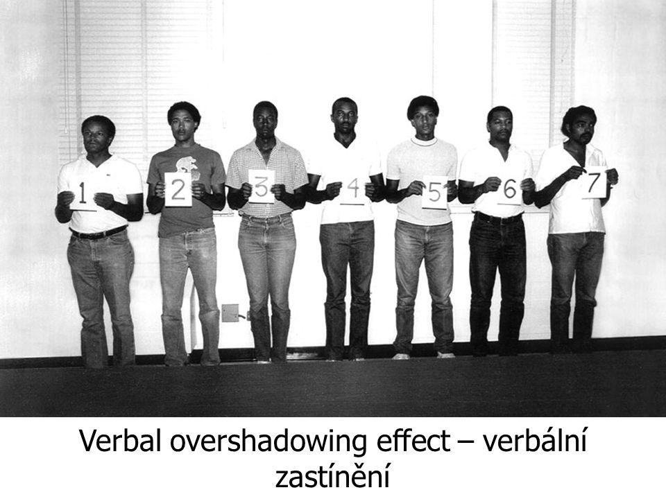 Verbal overshadowing effect – verbální zastínění