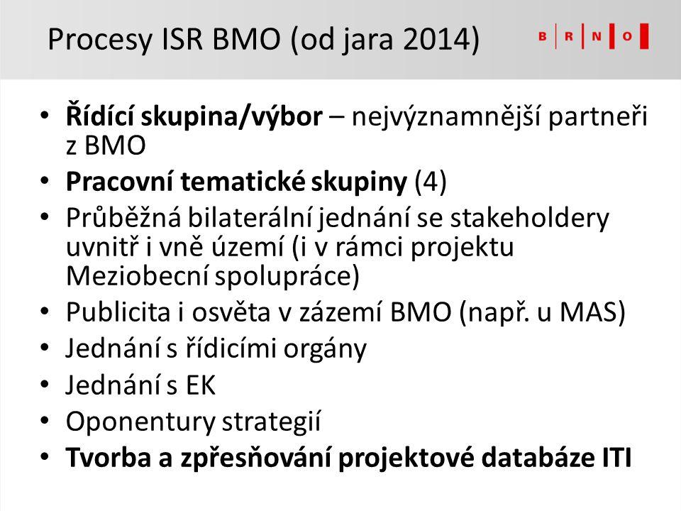 Řídící skupina/výbor – nejvýznamnější partneři z BMO Pracovní tematické skupiny (4) Průběžná bilaterální jednání se stakeholdery uvnitř i vně území (i