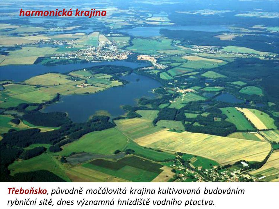 harmonická krajina Třeboňsko, původně močálovitá krajina kultivovaná budováním rybniční sítě, dnes významná hnízdiště vodního ptactva.