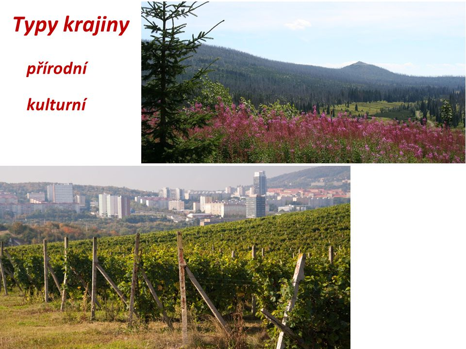 Typy krajiny přírodní kulturní