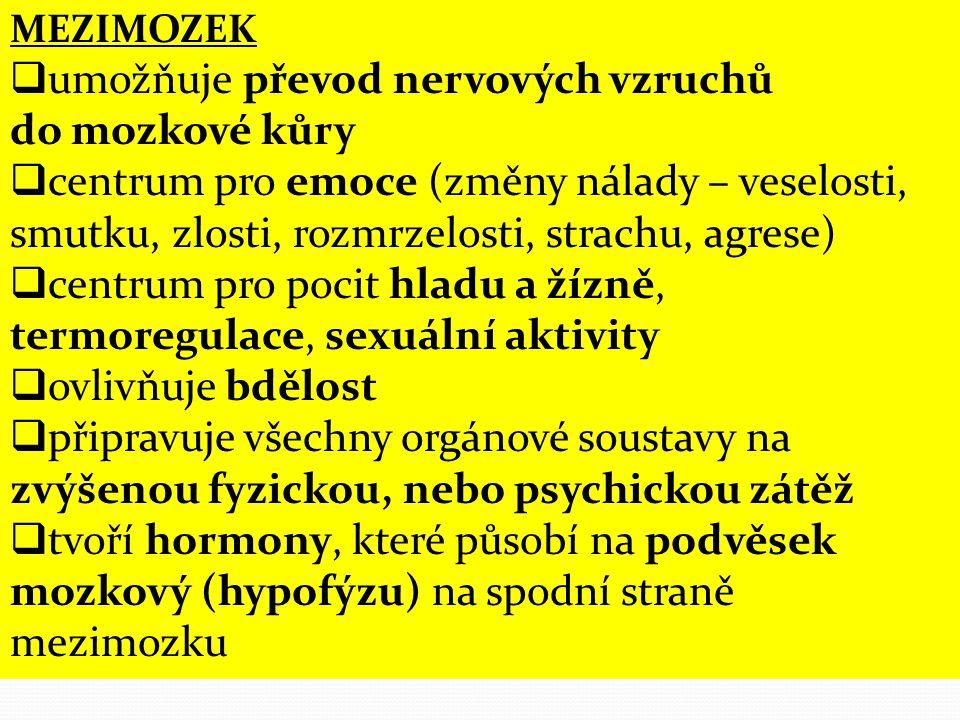 MEZIMOZEK  umožňuje převod nervových vzruchů do mozkové kůry  centrum pro emoce (změny nálady – veselosti, smutku, zlosti, rozmrzelosti, strachu, agrese)  centrum pro pocit hladu a žízně, termoregulace, sexuální aktivity  ovlivňuje bdělost  připravuje všechny orgánové soustavy na zvýšenou fyzickou, nebo psychickou zátěž  tvoří hormony, které působí na podvěsek mozkový (hypofýzu) na spodní straně mezimozku
