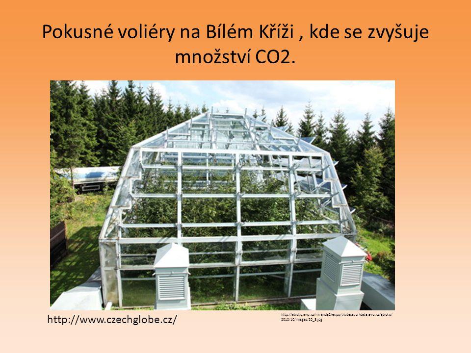 Pokusné voliéry na Bílém Kříži, kde se zvyšuje množství CO2. http://abicko.avcr.cz/miranda2/export/sitesavcr/data.avcr.cz/abicko/ 2012/10/images/20_3.