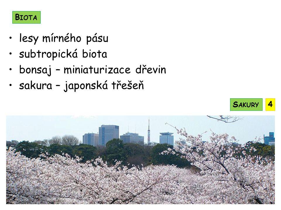 císařství současný císař Akihito vysoká životní úroveň obyvatel japonština náboženství: šintoisté, buddhisté, křesťané 1945 – Američané shodili 2 atomové bomby na Hirošima, Nagasaki gejša – profesionální společnice sumo – tradiční sport samurajové – bojovníci O BYVATELSTVO