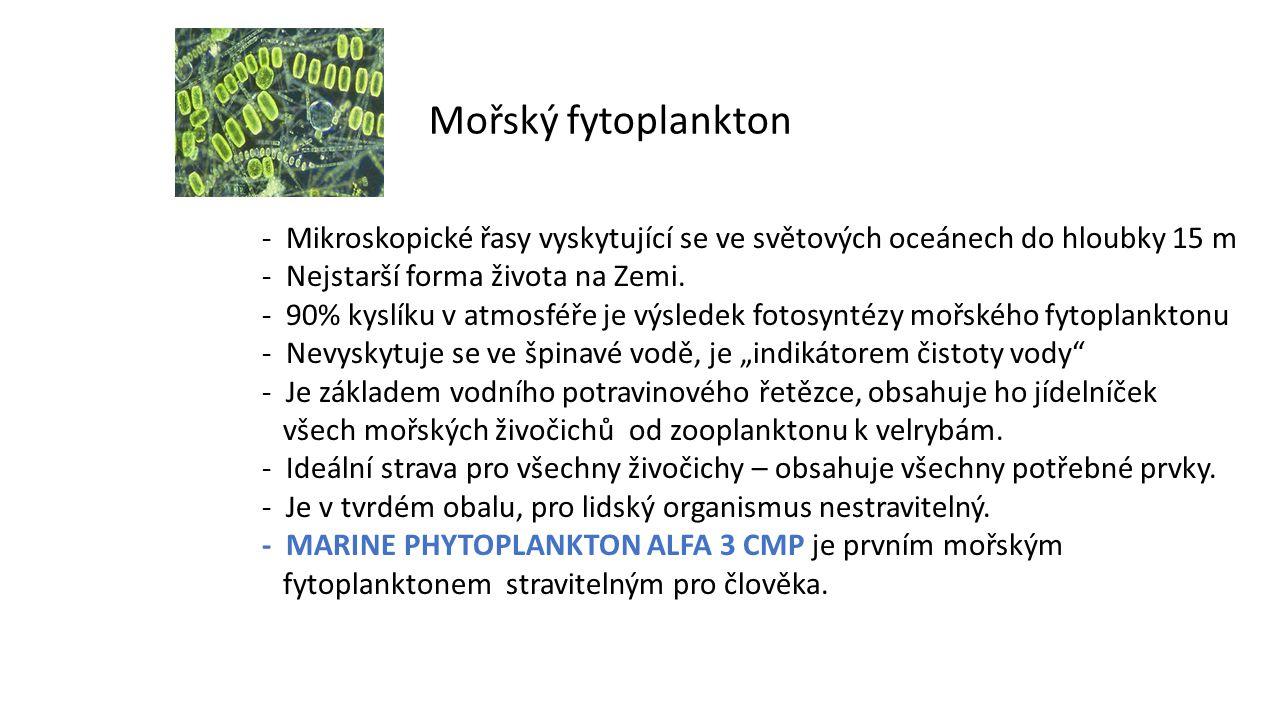 Mořský fytoplankton - Mikroskopické řasy vyskytující se ve světových oceánech do hloubky 15 m - Nejstarší forma života na Zemi.