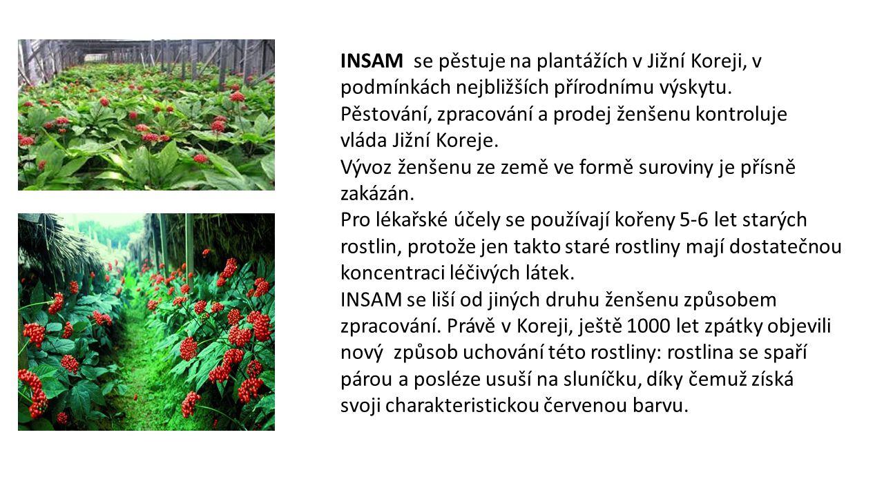 INSAM se pěstuje na plantážích v Jižní Koreji, v podmínkách nejbližších přírodnímu výskytu.