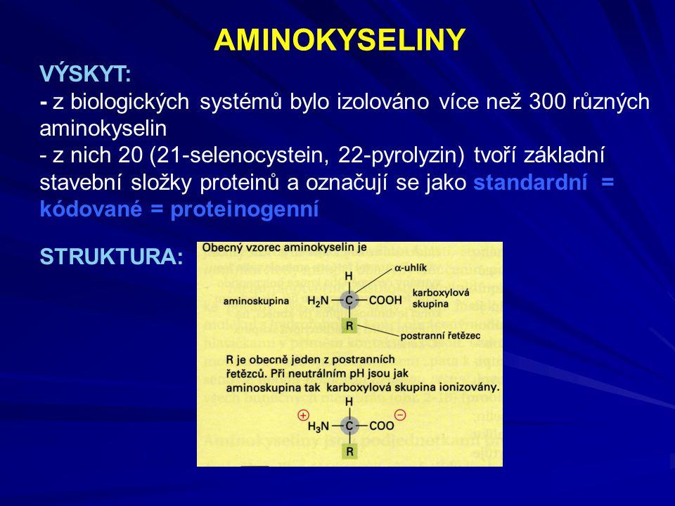 AMINOKYSELINY VÝSKYT: - z biologických systémů bylo izolováno více než 300 různých aminokyselin - z nich 20 (21-selenocystein, 22-pyrolyzin) tvoří zák
