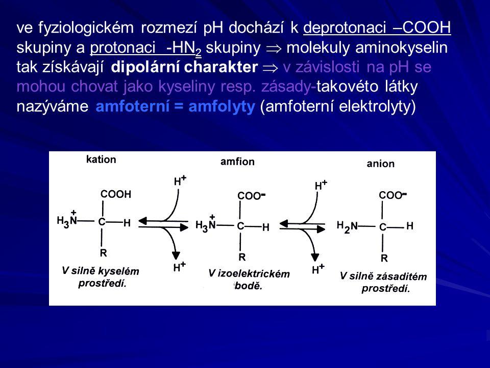  celkový náboj aminokyseliny závisí na pH (protonové koncentraci okolního prostředí) je-li výsledný náboj nulový, je amfolyt ve formě amfiontu = dipolárního iontu a neputuje v elektrickém poli hodnota pH prostředí, při níž k tvorbě amfiontu dochází se nazývá izoelektrický bod pI hodnota pH prostředí, při kterém má molekula celkový elektrický náboj roven nule se nazývá izoelektrický bod pI